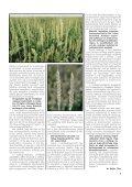 """vetŽmag 2002/2 k""""sz - vszt.hu - Page 7"""