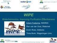 (WIPE) - part 1 - NBV