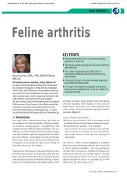 How I Approach... Feline Arthritis. In: Veterinary Focus 17(3); 2007