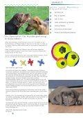 Hundespielzeug - Futtersuche - Heimtierservice Katharina Schlechter - Seite 2