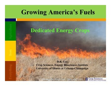 Growing America's Fuels - University of Illinois at Urbana-Champaign