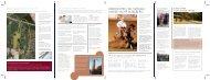 Artikel i SvedalaNytt om nya plan- och bygglagen - Svedala kommun