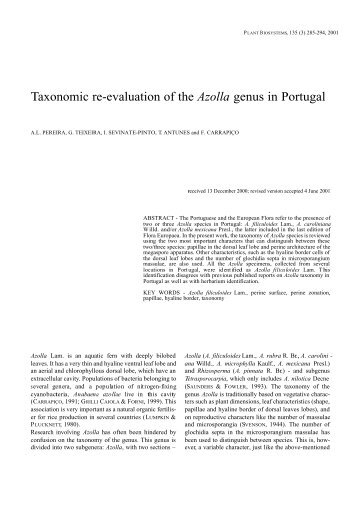 Taxonomic re-evaluation of the Azolla genus in Portugal