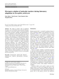 Divergent evolution of molecular markers during laboratory ...