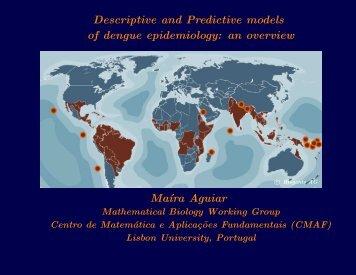 Descriptive and Predictive models of dengue epidemiology: an ...