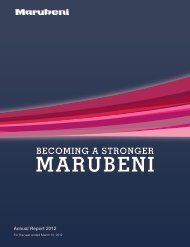 Designing Growth: Marubeni's Development Strategies