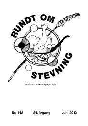 Nr. 142 24. årgang Juni 2012 - Stevning - InfoLand