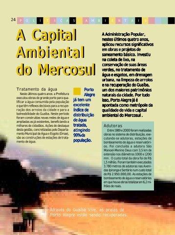A Capital Ambiental Ambiental Ambiental Ambiental do Mercosul do ...