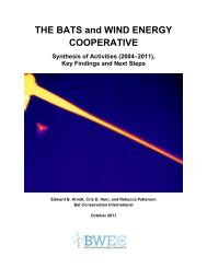 Bats and Wind Energy Cooperative Synthesis