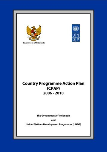 Country Programme Action Plan - UNDP
