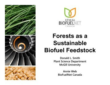 Forests as a Forests as a Sustainable Biofuel Feedstock - VCO