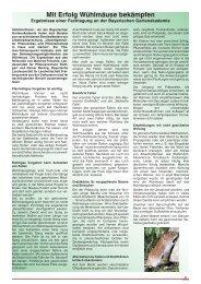 Mit Erfolg Wühlmäuse bekämpfen - Verband Wohneigentum eV