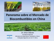 Biocombustibles en China - Mercosoja 2011