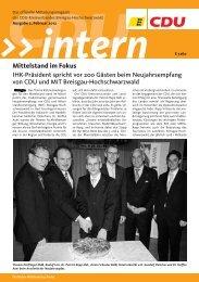 CDU Intern BH Februar 2012