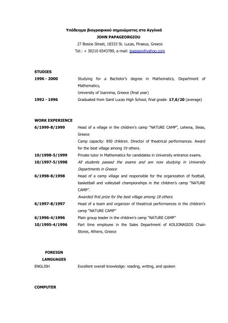 sample chronological cv  english