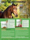 Masterhorse Hauptkatalog - Seite 4
