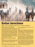 Masterhorse Hauptkatalog - Seite 6