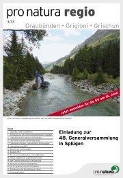 regio 3/2013 - Pro Natura Graubünden