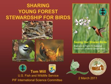 birding - Sustainable Forests Education Cooperative - University of ...