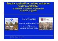 Besoins qualitatifs en acides aminés en nutrition ... - Institut Danone