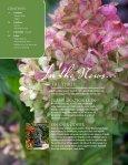 Inside - Chalet Nursery - Page 2