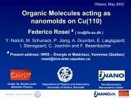 Organic Molecules acting as nanomolds on Cu(110)
