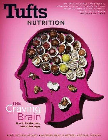 Craving Brain