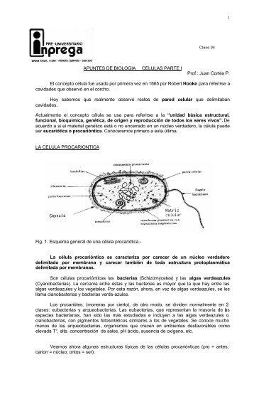 BIOLOGIA COMUN CLASE 4 CELULA PROCARIONTICA.pdf