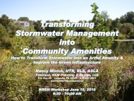 Transforming Stormwater Management into Community Amenities