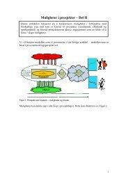 Muligheter i prosjekter - NTNU