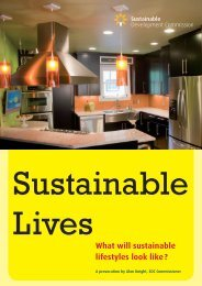SDC_sustainable_lives_3.pdf - Sustainable Development ...