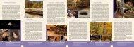 Netopýři tradičně žijí s námi - Národní park Podyjí