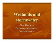 Wetlands and stormwater - Wisconsin Wetlands Association
