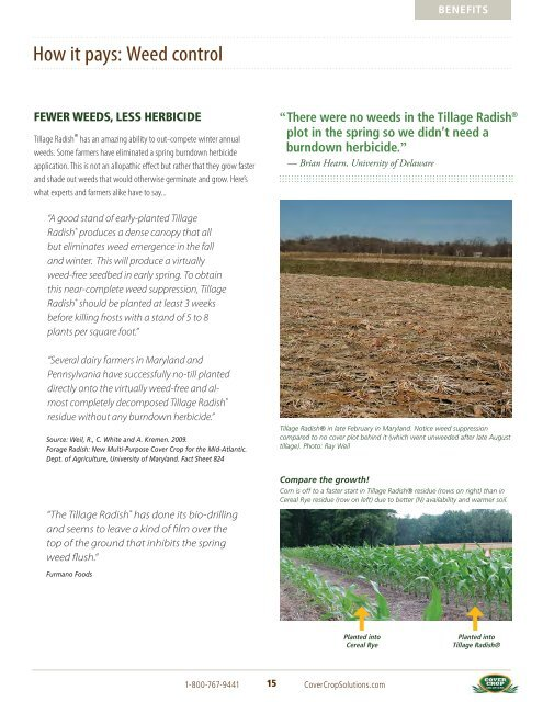 tillage-radish-resource-guide