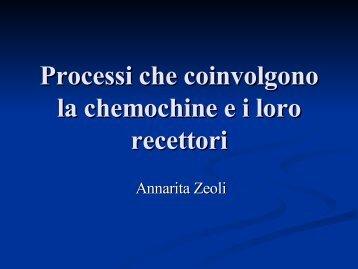 Processi che coinvolgono la chemochine e i loro recettori