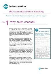 Multi-Channel Marketing - XLN Telecom