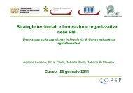 Strategie territoriali e innovazione organizzativa nelle PMI Una ...