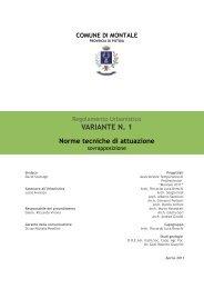 NTA RU VARIANTE 1 - Comune di Montale