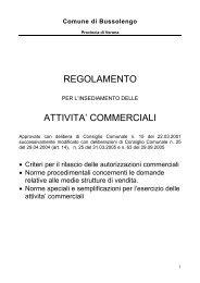 REGOLAMENTO ATTIVITA' COMMERCIALI - Comune di Bussolengo