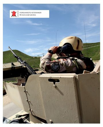 Rapport veteraner.pdf - Forsvaret
