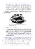 mal etwas zur Erheiterung - Wolf-Ekkehard Lönnig - Seite 5