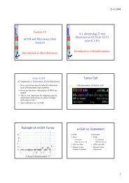 Print-PDF (hand out)