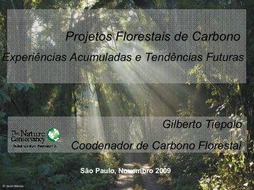 Projetos florestais de carbono – experiência acumulada e ... - SIGAM