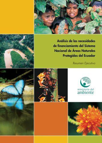 Análisis de las necesidades de financiamiento del Sistema Nacional ...