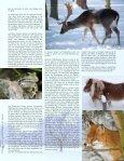 aktuellen - Seite 5