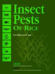 Insect Pests Of Rice - IRRI books - International Rice Research ...