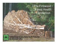 The Firewood - Forest Health Connection