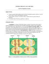 Lab #11: Population Genetics