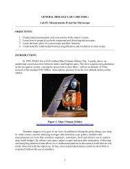 1 GENERAL BIOLOGY LAB 1 (BSC1010L) Lab #2: Measurements II ...