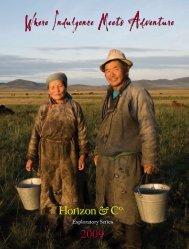 2009 Exploratory Brochure - Horizon & Co.